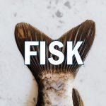 Bild på fisk